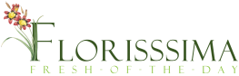 Logo Florisssima mobile